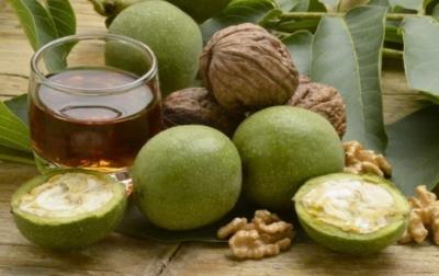 Что лечит настойка зеленого грецкого ореха