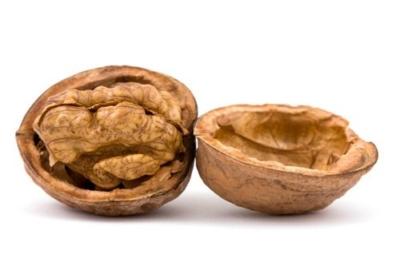 Состав, полезные свойства и противопоказания ореховых листьев и скорлупы